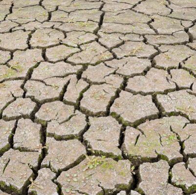 Podcast : Spécial dérèglement climatique - Alimentation et loi Climat